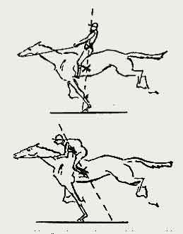 Как правильно сидеть на лошади Проект «Галопом в